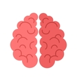 Human Brain Isolated on White Background vector image