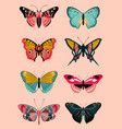 realistic butterfly and moth collection vector image