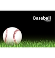 Basball ball vector | Price: 1 Credit (USD $1)