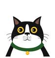 cute cartoon cat icon vector image vector image