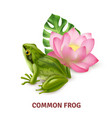 realistic frog image vector image