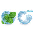 splash water and mint 3d realistic vector image vector image