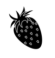 strawberry healthy fruit nature silhouette vector image vector image