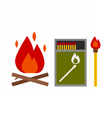 Fire Starter Kit vector image