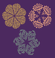 Ornamental round floral patterns vector image