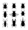 bugs silhouettes set vector image