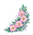 hand drawn dog-rose bunch with pink flowers vector image