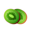 kiwi - kiwi half or cross section vector image