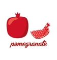 pomegranate fruits poster in cartoon style vector image