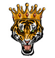 portrait a tiger with a golden crown on his vector image vector image