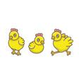 set chicks vector image vector image