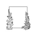 cactuses frame succulent frame hand vector image vector image