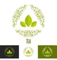 Green tea branding concept vector image