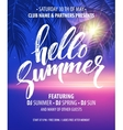 Hello Summer Party Flyer Design vector image