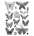 Monochrome butterfly set vector image vector image