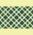 plaid diagonal seamless fabric texture vector image vector image