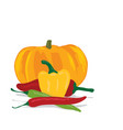 pumpkin and peppers vector image vector image