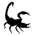 scorpio silhouette icon eps vector image