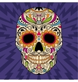 Mexican skull the original pattern vector image