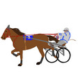 horse and jockey harness racing color vector image vector image