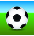 Soccer ball on field vector image