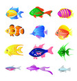 set of bright fish isolated on the white vector image