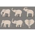 White elephant set vector image