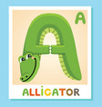 a is for alligator letter a alligator animal vector image vector image