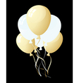 balloons in the air vector image vector image