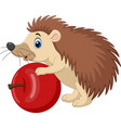 cartoon bahedgehog holding red apple vector image vector image