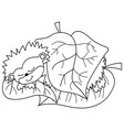 cute cartoon hedgehog sleeping vector image