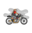 dog is riding a classic motorcycle vector image