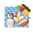 picnic layout top view with sliced watermelon vector image