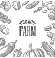 set vegetables and organic farm lettering vector image vector image