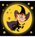 witch halloween and his owl vector image