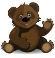 funny bear vector image