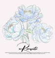 blue peony flowers graphic invitation botanical vector image vector image