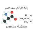 C3H7NO2 zwitterion of alanine amino acid molecule vector image vector image