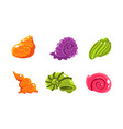 colorful glossy seashells and sea creatures set vector image