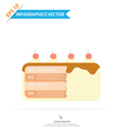 Layer Cake Infographics vector image