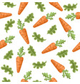 orange carrot natural with green leaves lettuce vector image vector image