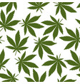seamless pattern green cannabis leaves vector image