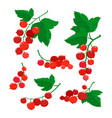 set of cartoon red currant berries isolated on vector image