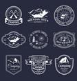 set vintage camping logos tourism vector image
