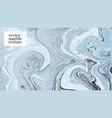 blue marble decoration liquid splash with shiny vector image vector image