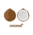 Coconut fruits poster in cartoon style depicting vector image