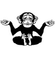 cartoon chimp in meditation black and white vector image vector image