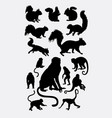 monkey squirrel and ape animal silhouettes vector image vector image
