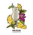 pina colada cocktail mint leaves and orchid vector image vector image