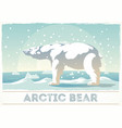 polar bear stands on snow looking into the vector image vector image